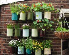 Si tienes una pared libre que necesites decorar o si no cuentas con demasiado espacio en tu patio, anímate a hacer tu propio jardín vertical. Se trata de estructuras verticales sobre las que puedes...