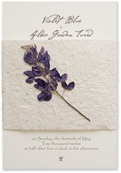 29804376f930c4b0ff12332840be41fd craft ideas sleeve asteri design 9 wedding invitations botanicals handmade paper,Handmade Paper Wedding Invitations