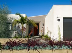 A lush front garden provides texture and color against the sleek, private facade. Cordelyne renegade, a purple flax-like plant, and Senecio ...