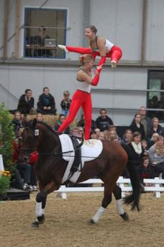 Volti Trick Riding, Rhythmic Gymnastics, Wire Art, Vaulting, Equestrian, Character Design, Barn, Horses, Yoga