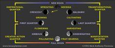 Lunar Phases / Nick Anthony Fiorenza
