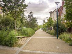 Park Landscape, Urban Landscape, Landscape Design, Residential Architecture, Landscape Architecture, Tree Photoshop, Rue Verte, Paving Design, Public Space Design