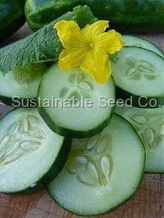 Marketmore 76 - Heirloom, Untreated, Open Pollinated, Vegetable Seeds - Sustainable Seed Company