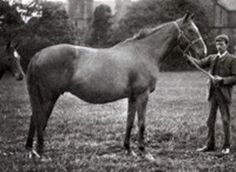 St. Marguerite (GB) 1879-1898 Ch.m. (Hermit (GB)-Devotion (GB) by Stockwell (GB) 1st 1000 Guineas; 2nd Oaks S. Dam of Seabreeze (Oaks, St. Leger, Coronation S), Le Var (Princess of Wales's S) important sire Tredennis; grand dam of Triple Crown winner Rock Sand. Reine de Course