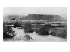 12 best medford oregon images medford oregon southern pear blossom rh pinterest com