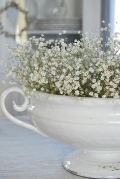 Babys breath - I like it best as it stands alone in all its beauty rather than as a filler in a bouquet Fresh Flowers, White Flowers, Beautiful Flowers, White Roses, White Cottage, Cottage Style, Rose Cottage, Casas Shabby Chic, Deco Floral