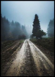 Foggy road Poster in de groep Posters / Afmetingen / 50x70cm bij Desenio AB (2557)