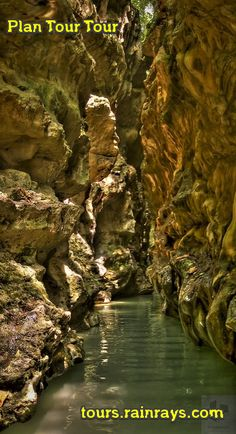 Tourist Attraction India: Robbers Cave Dehradun India