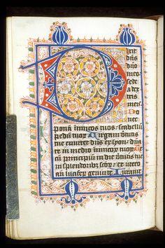 Egerton 3271   f. 144v   Puzzle initial