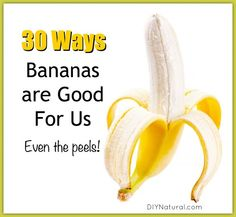 Are Bananas Good For You Benefits