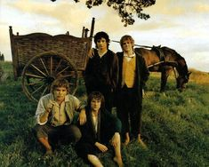 Frodo Sam Merry and Pippin | Now you are in the PICTURES / TOGETHER of the site LOTR FLAME .