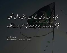 Happy Independence Day Pakistan, Independence Day Pictures, Pakistan Day, My Diary, True Words, Life Quotes, Poetry, Knowledge, Feelings