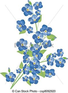 Vector - forget-me-not flowers - stock illustration, royalty free illustrations, stock clip art icon, stock clipart icons, logo, line art, EPS picture, pictures, graphic, graphics, drawing, drawings, vector image, artwork, EPS vector art
