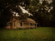 Martin County NC Martin County, Cabin, House Styles, Abandoned, Home Decor, Beauty, Homemade Home Decor, Beleza, Cabins