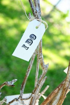 """The """"Unity"""" Tree we used at our wedding instead of the traditional unity candles or sand. We purchased some stamps at Hobby Lobby with love/wedding/bible verses on them and tie those to the limbs."""