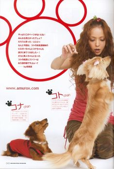 Photo Book, Japanese, Gallery, Movie Posters, Pictures, Animals, Magazine, Fashion, Photos