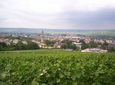 View of Épernay from Mont Bernon in Champagne region Champagne Region, France, Dolores Park, Cruise, In This Moment, Memories, Travel, Outdoor, City