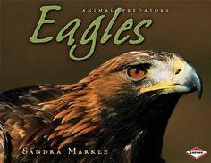 Eagles (Animal Predators) by Sandra Markle