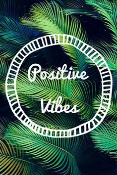 Positive Vibes always on the menu #hawaii #lashpros #primphonolulu