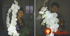Z obyčajnej orchidey z obchodu vypestovala túto nádheru:Stačilo, aby urobila tieto 2 základné veci!