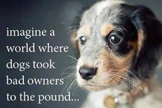 No bad pets...just bad people?