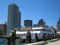 Boston Harbor, the whale watch boat!