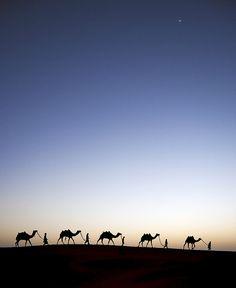 Alif Laila (1001 Nights).  An evening shot in Thar.