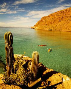 Baja California sur México Baja California Sur, Hotel California, Pretty Pics, Pretty Pictures, Places Around The World, Around The Worlds, The Eagles, Mexico Travel, Woodstock