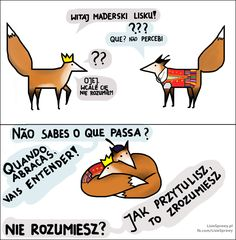 polityczne_rozmowy Fox Art, Wombat, Positive Mind, Foxes, Positivity, Lettering, Thoughts, Disney, Funny