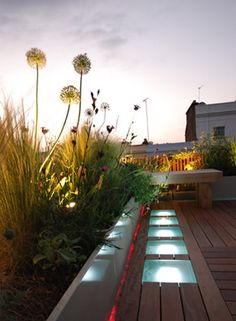 Roof terrace by Charlotte Rowe with decking, glass and dramatic lighting in Holland Park, London Shed Roof, Patio Roof, Landscape Design, Garden Design, City Landscape, Green Terrace, Holland Park, Garden Architecture, Rooftop Terrace