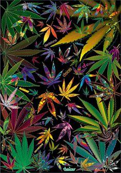 Weed Art   the world combined using marijuana leaves or marijuana leaf art