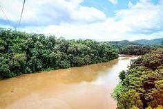 #OldPhotos #ViewThroughTheWindow #ViewFromTheCableCar #SkyrailRainforestCableway #BarronRiver #Kuranda #Cairns #Queensland #Australia #Y2011