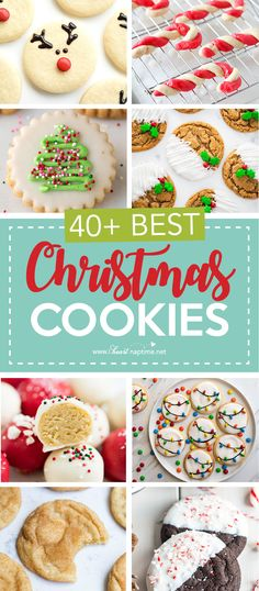 40+ of the BEST Christmas Cookies!