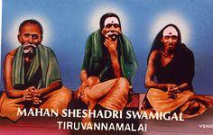 Tres aspectos de la vida de Sheshadri  Swamigal.