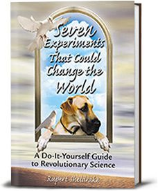 Book cover for Seven Experiments That Could Change the World vielleicht interessant?