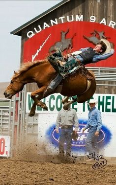 rider RC Landingham, age He made 8 seconds! Cowboy Horse, Cowboy Art, Cowboy And Cowgirl, Cowboy Photography, Rodeo Rider, Bareback Riding, Bucking Bulls, Rodeo Events, Rodeo Cowboys
