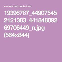 19396767_449075452121383_44184809269706449_n.jpg (564×844)