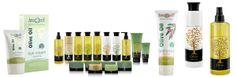 Over olive-art, groene webshop | olive-art