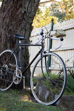 path Malvern Star vintage /'fan/' style decals road