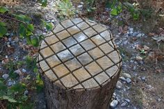 Chess Board Tree Stump?