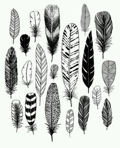 Feather drawing ideas
