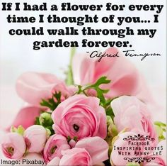 39 Best Floral Quotes Images Beautiful Flowers Floral Quotes