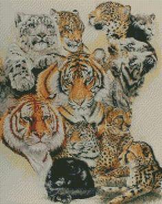 cross stitch kit coats of many colours - tiger lion leopard cheetah big cats