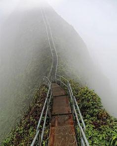 Foot bridge in Hawaii