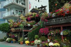 Flower house, Alki Beach, Seattle, WA - just amazing to look at!