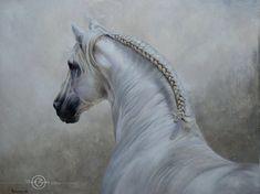 Rebuscado , Pur Spanish stallion Carolle Beaudry , Art Équin : Equestrian Art