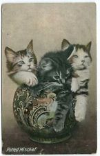 Postcard (ref 1434) - 'Potted Mischief' - Kittens in a pot