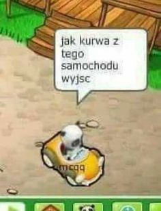 Polish Memes, Bad Memes, Wtf Funny, Reaction Pictures, Cringe, Haha, Humor, Feelings, Cheer