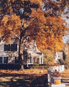 Uploaded by Ãsôsh ❀. Find images and videos about photography, autumn and fall on We Heart It - the app to get lost in what you love. Beautiful Homes, Beautiful Places, Photo Deco, Autumn Cozy, Autumn Fall, Autumn Aesthetic, Jolie Photo, Autumn Inspiration, Fall Halloween