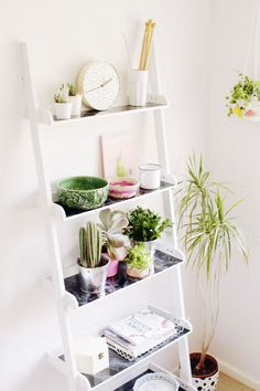 TOP 7 / SHELF IDEAS